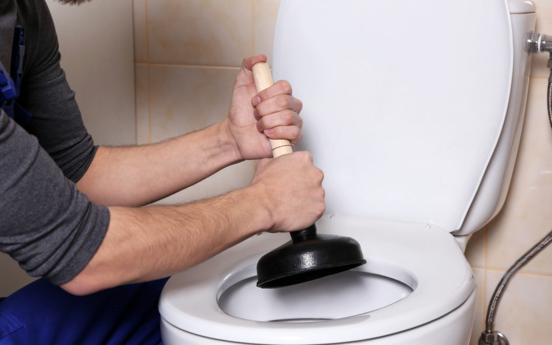 when to replace a toilet